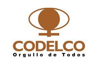 http://www.codelco.com/